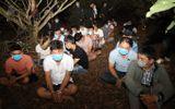 """Cảnh sát vây ráp sòng bạc trong vườn nhãn: Hé lộ """"ông trùm"""" Cu Chim"""