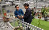 Cần tăng cường liên kết để phát triển ngành hoa lan Việt Nam