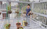 Truyền thông - Thương hiệu - Chàng trai 9X gốc Hà Nam và tình yêu lớn dành cho loài hoa lan