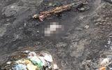 An ninh - Hình sự - Thi thể trẻ sơ sinh còn nguyên dây rốn bên bờ suối ở Quảng Ninh