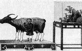 Đời sống - Tục tế trâu thời nhà Nguyễn