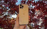 Công nghệ - Bỏ 35 triệu mua iPhone 12 Pro Max, người phụ nữ sững sờ nhận về vật phẩm khó tin