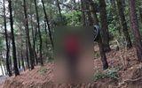 Tin trong nước - Đi vào rừng, kinh hãi phát hiện thi thể treo cổ trên cây thông
