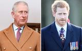 """Thái tử Charles phản ứng ra sao sau khi bị chính Hoàng tử Harry tố """"quay lưng""""?"""