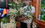 Chặng đường khởi nghiệp gian nan của ông chủ vườn lan nổi tiếng Bắc Ninh - Trương Cường