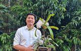 Phía sau nghề trồng hoa lan đầy gian truân của anh Nguyễn Quốc Tư