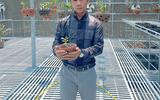 Nghệ nhân Trần Quốc Hòa và câu chuyện kinh doanh thành công lan đột biến đầy lý thú