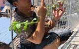 Xã hội - Nghệ nhân Phan Hữu Phước thành công cùng vườn lan đột biến