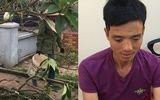 Tin trong nước - Vụ hàng trăm ngôi mộ ở Hải Phòng bị đập phá: Hé lộ danh tính nghi phạm
