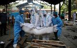 """Tin thế giới - Ấn Đố phá kỷ lục số ca nhiễm trong ngày, bị ví như """"địa ngục COVID-19"""""""