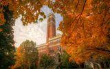 Chuyện học đường - Top 8 ngành học đắt đỏ nhất tại Mỹ