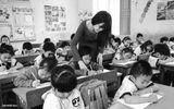 Giáo dục pháp luật - Đấu thầu đào tạo giáo viên: Liệu có đảm bảo chất lượng, minh bạch?