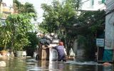 Dân Sài thành bó gối chờ nước rút