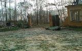 Nổ kho thuốc pháo ở Phú Thọ: Gần 100 người thương vong