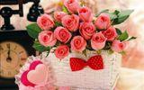 Lời chúc Valentine hài hước cho lễ tình nhân thêm ngọt ngào