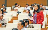 Đại biểu Quốc hội đề xuất chỉ lấy phiếu tín nhiệm ở 2 mức