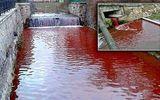 Kỳ lạ nước sông hóa đỏ như máu người sau một đêm