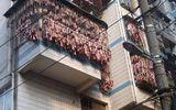 Trung Quốc: Thịt xông khói chất đầy ban công bất chấp ô nhiễm