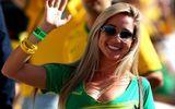 Nhan sắc xinh đẹp của cổ động viên Brazil mùa World Cup