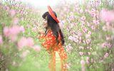 Thiếu nữ 9X xứ Tuyên xinh đẹp trong tà áo dài đỏ du xuân đầu năm