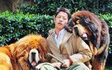 Doanh nhân bất động sản Trung Quốc chi 42 tỷ để mua thú cưng