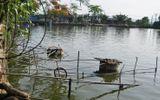 Hà Nội: Đau lòng cảnh người dân 5 năm gánh nước ao tù về ăn