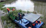 TP.HCM: Cá chết hàng loạt trên kênh Nhiêu Lộc- Thị Nghè