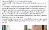 """Hồ Quang Hiếu chụp ảnh cùng """"người cổ dài"""" gây sốt"""