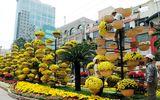 Điểm danh những địa điểm chụp ảnh Tết Ất Mùi đẹp nhất Sài Gòn