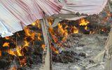 Cháy nhà máy nông sản: Lửa lại bùng phát, đang di dân khẩn cấp