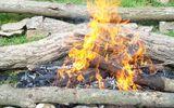 Vì sao phải kiêng lửa trong Tết Hàn Thực 3/3?
