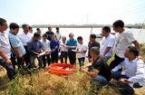 Thị trường - Nông dân kiểu mới ở Trung Quốc kiếm cả trăm triệu mỗi năm nhờ Internet