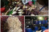 Thực phẩm - TP HCM: Ngó sen, hoa chuối ngâm tẩm hóa chất độc hại, chờ ra thị trường