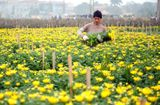 Thực phẩm - Định hướng phát triển Nông nghiệp và xây dựng Nông thôn mới của Hà Nội giai đoạn 2021 - 2030