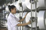 Thị trường - Nỗ lực không ngừng nghỉ của PVN, PVTEX và người lao động Dầu khí để vận hành trở lại NMXS Đình Vũ