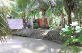 Tin trong nước - Cà Mau: Điều tra vụ người đàn ông giận vợ bỏ đi sau đó tử vong dưới mương nước