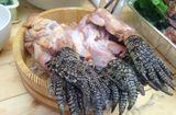 """Ăn - Chơi - Kinh dị món súp chân cá sấu của quốc đảo Singapore không dành cho người """"yếu tim"""""""
