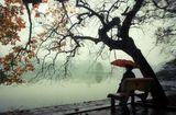 Tin trong nước - Miền Bắc sắp đón gió mùa Đông Bắc: Trời trở rét, có mưa dông