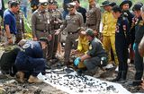Tin thế giới - Kinh hoàng phát hiện 288 khúc xương được tìm thấy dưới ao gần nhà nghi phạm giết người