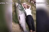 """Video-Hot - Video: Ngư dân thích thú bắt được cá trắm đen """"siêu to khổng lồ"""""""