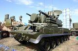 Tin thế giới - Tình hình chiến sự Syria mới nhất ngày 25/11: Syria bác tin hệ thống Pantsir-S1 bị Isreal phá hủy