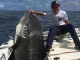 """Video-Hot - Video: Choáng váng xem """"cần thủ"""" 8 tuổi câu được cá mập hổ nặng hơn 3 tạ"""
