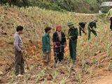 Cán bộ, chiến sĩ biên phòng hết lòng giúp đỡ bà con vùng cao Lào Cai