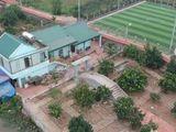 Ý Yên, Nam Định: Khu nhà vườn xây dựng bất hợp pháp, chính quyền không hay biết?