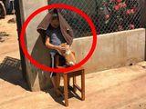 Cậu bé ôm chó đứng phơi nắng giữa trưa, biết được lý do ai cũng phải