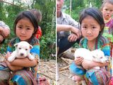 Mẹ bắt chó đi bán, cô bé vùng cao liên tục xin xỏ và hành động đặc biệt từ vị khách lạ