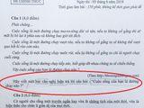 Thi vào lớp 10: Những dạng đề nghị luận 2K5 đặc biệt lưu ý trong bài thi môn Ngữ Văn