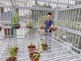 Chàng trai 9X gốc Hà Nam và tình yêu lớn dành cho loài hoa lan