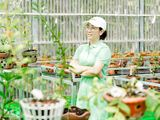 Thái Anh Tuyết: Tôi vẫn đeo đuổi cả hoa lan và bất động sản