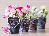 Những lời chúc Mẹ cảm động nhất nhân dịp Mother's Day